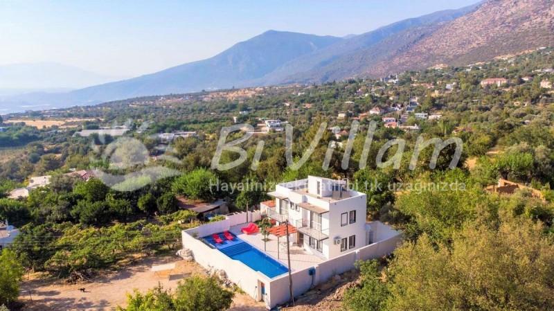 Villa Börü B